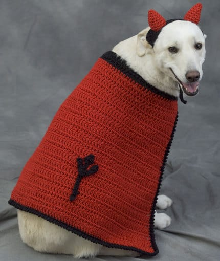 dog with a crocheted cape