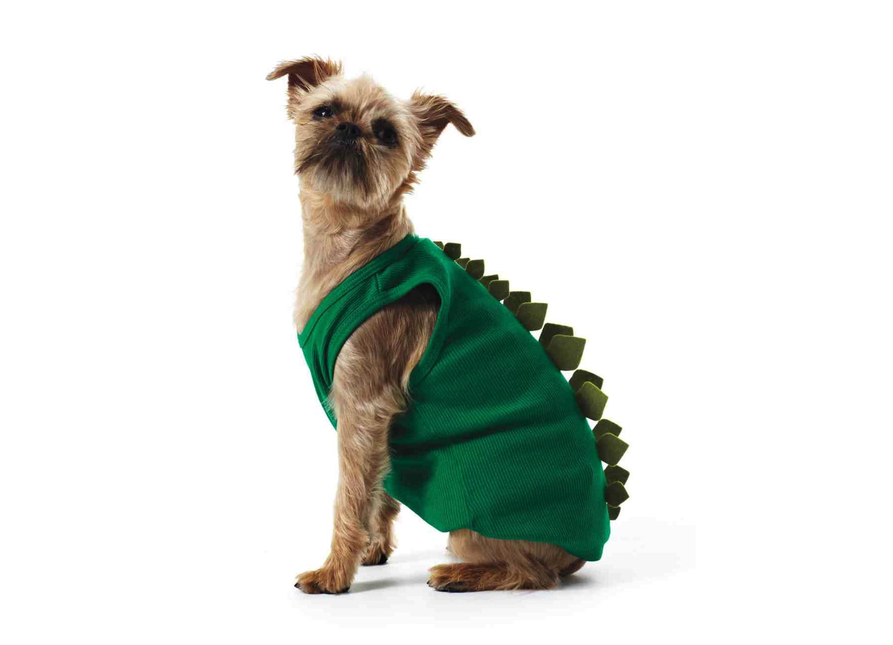 Dinosaur project dog costume