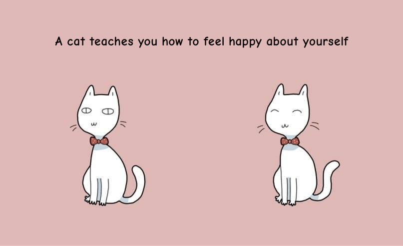 cats love themselves