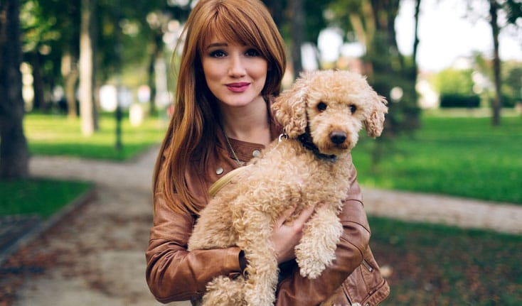 14 Reasons to Love Your Pets Even More
