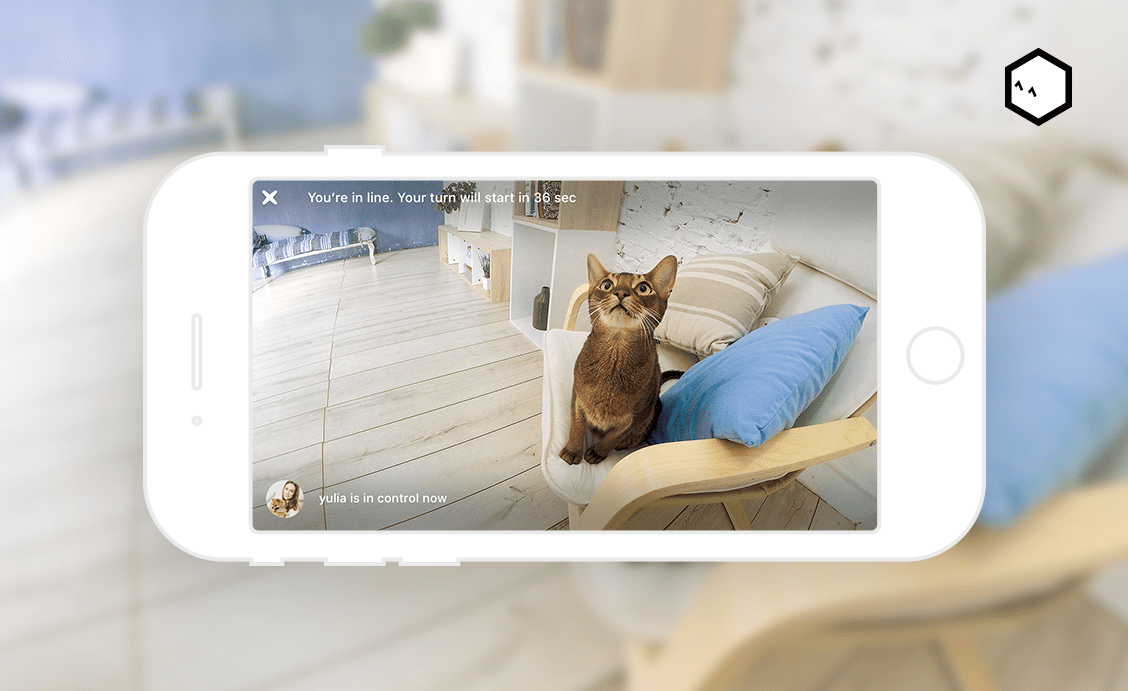 petcube pet camera lets you view your cat or dog from your phone
