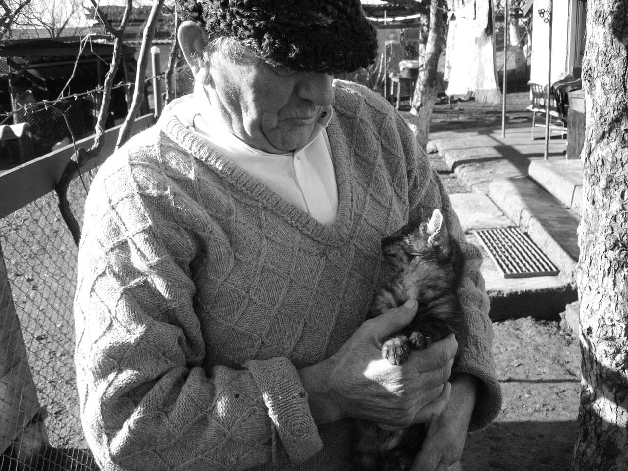 cat with an old man