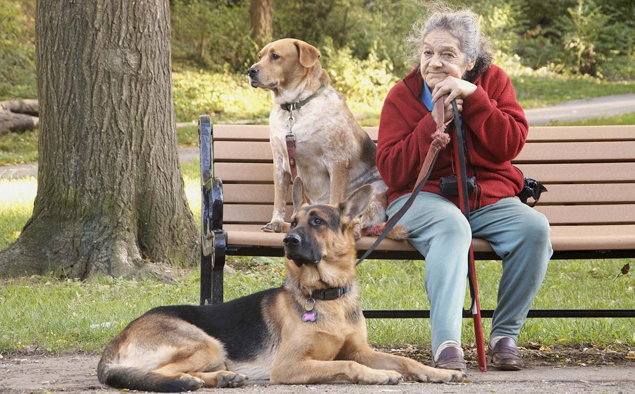 old lady with two dogs