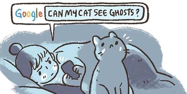 10 Comics Every Cat Owner Will Understand