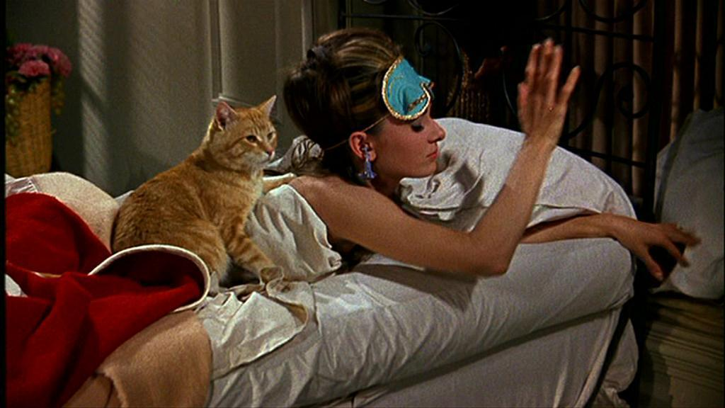 Cat, Breakfast at Tiffany's