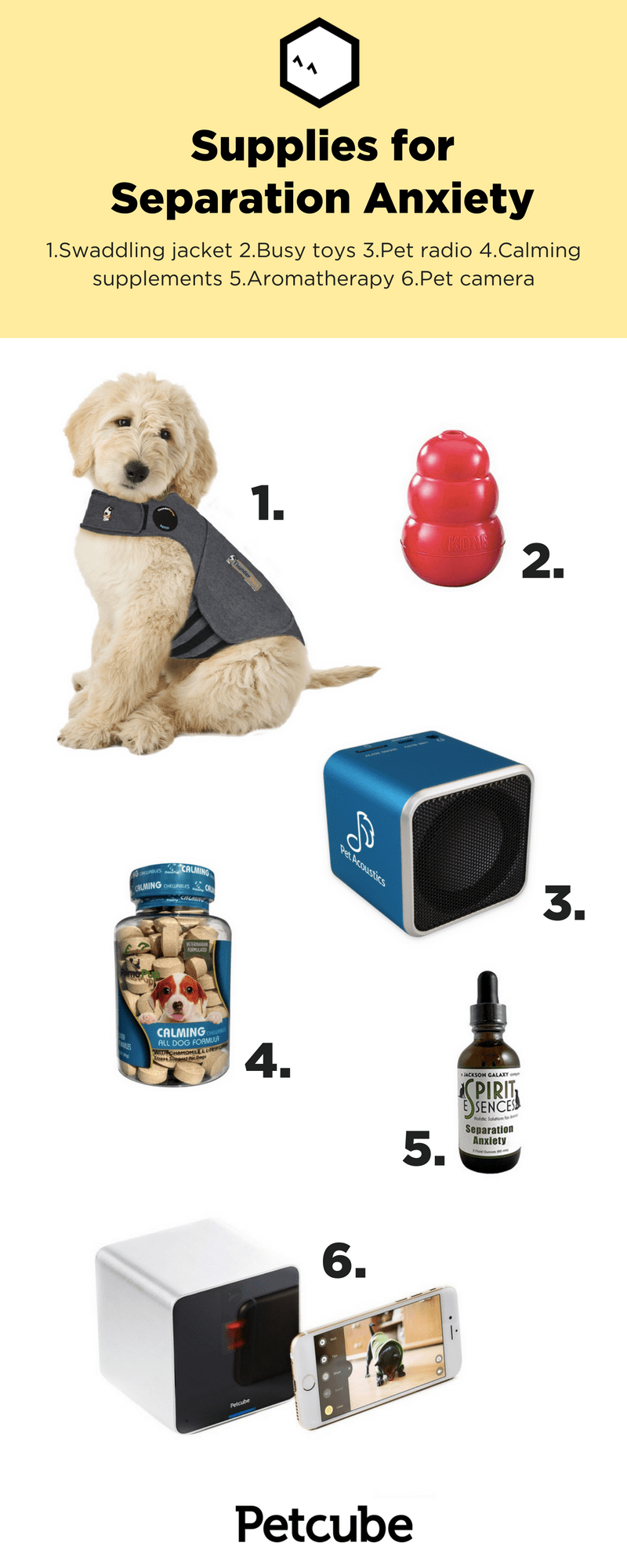 Infographic showing best supplies for separation anxiety in dogs