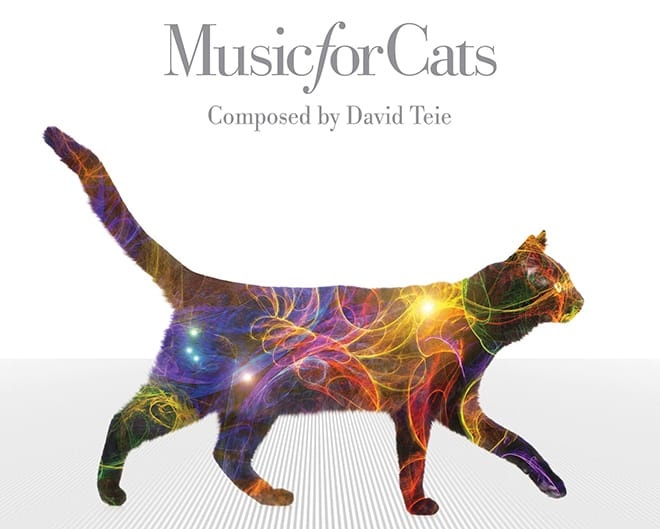 David Teie's Music for Cats