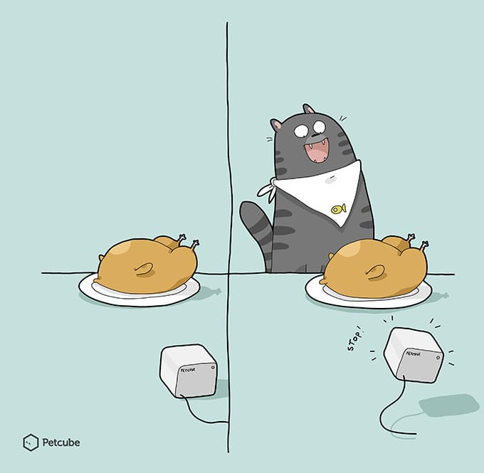 Cat stealing food comics