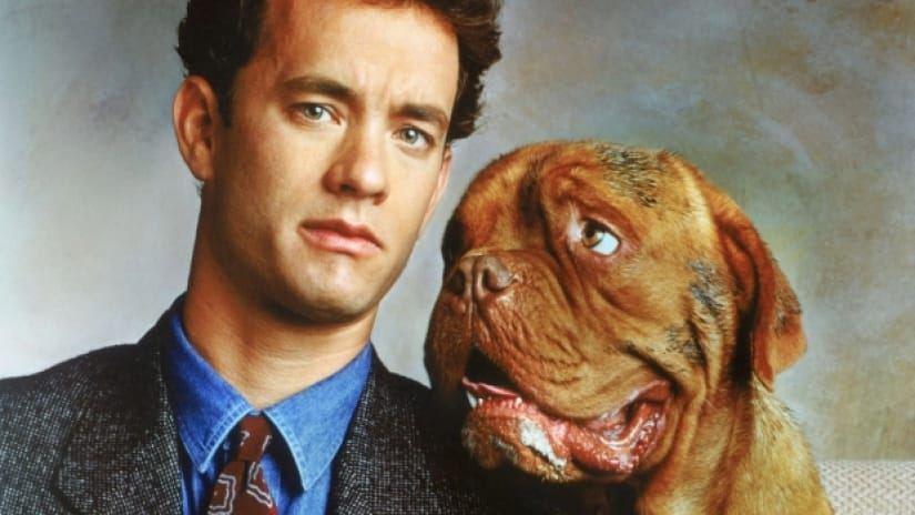 12 Famous Movies About Dogs