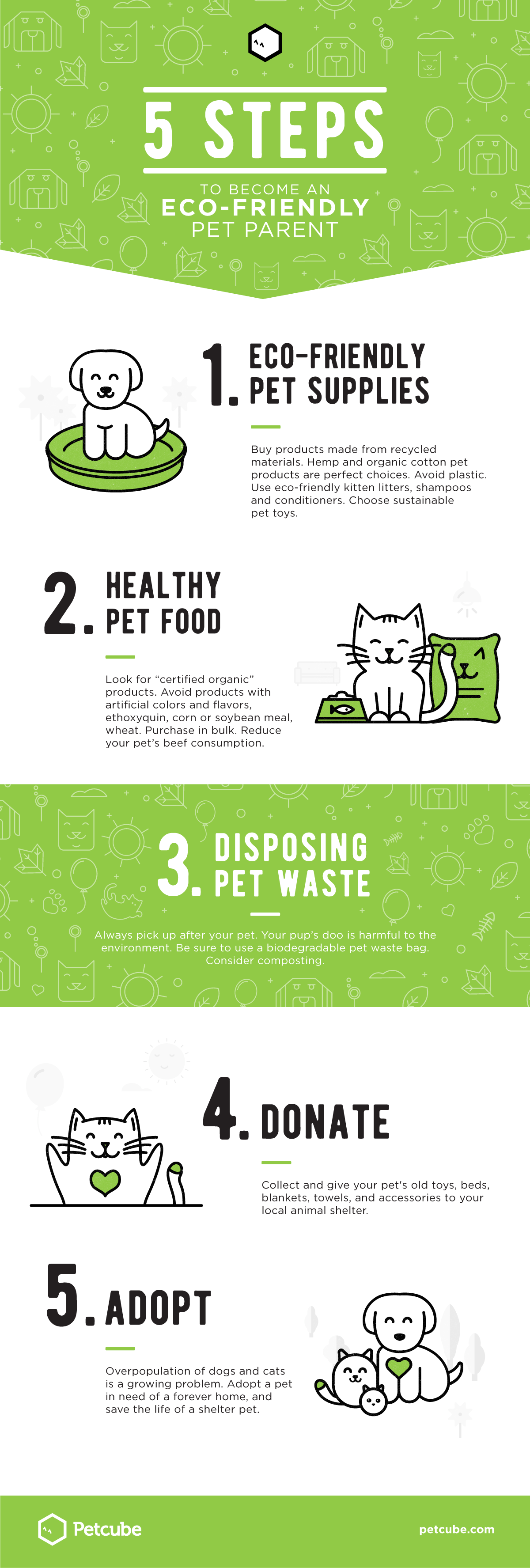 5 Steps To Become An Eco-Friendly Pet Parent