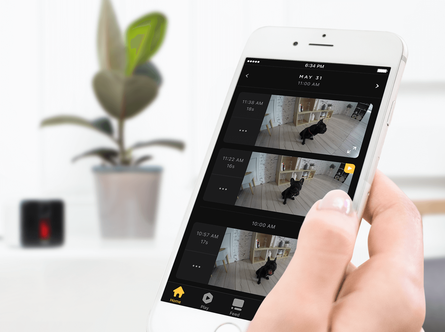 Don't miss out! Petcube Care gives you video history