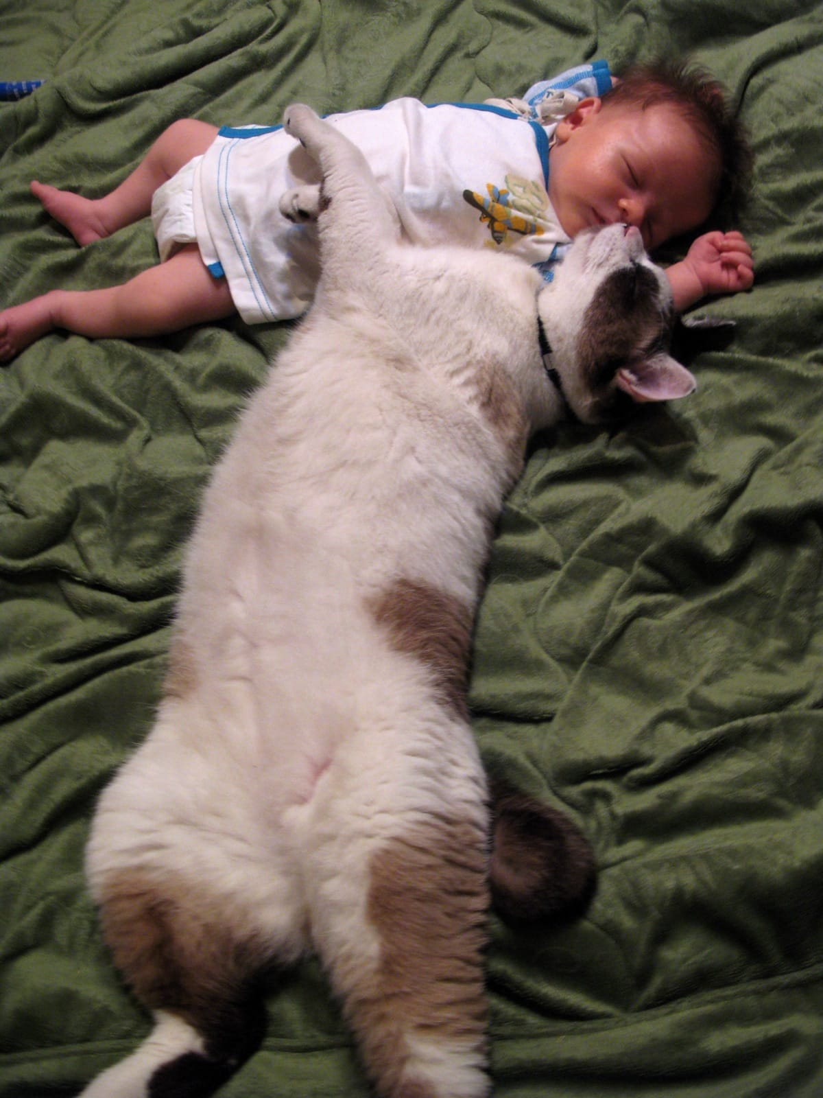 Baby boy sleeping with a cat is so cute
