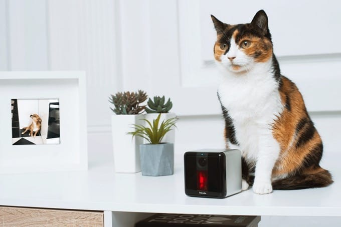 Petcube Play interactive pet camera