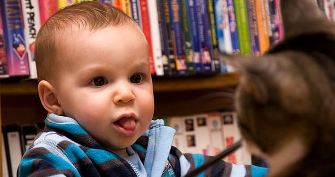 Cute baby boy stares at a cat