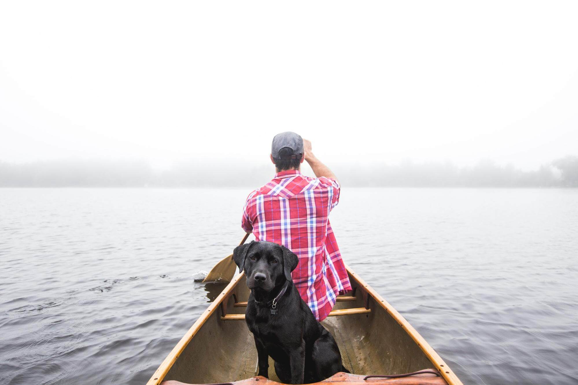 A man and a dog on a boat
