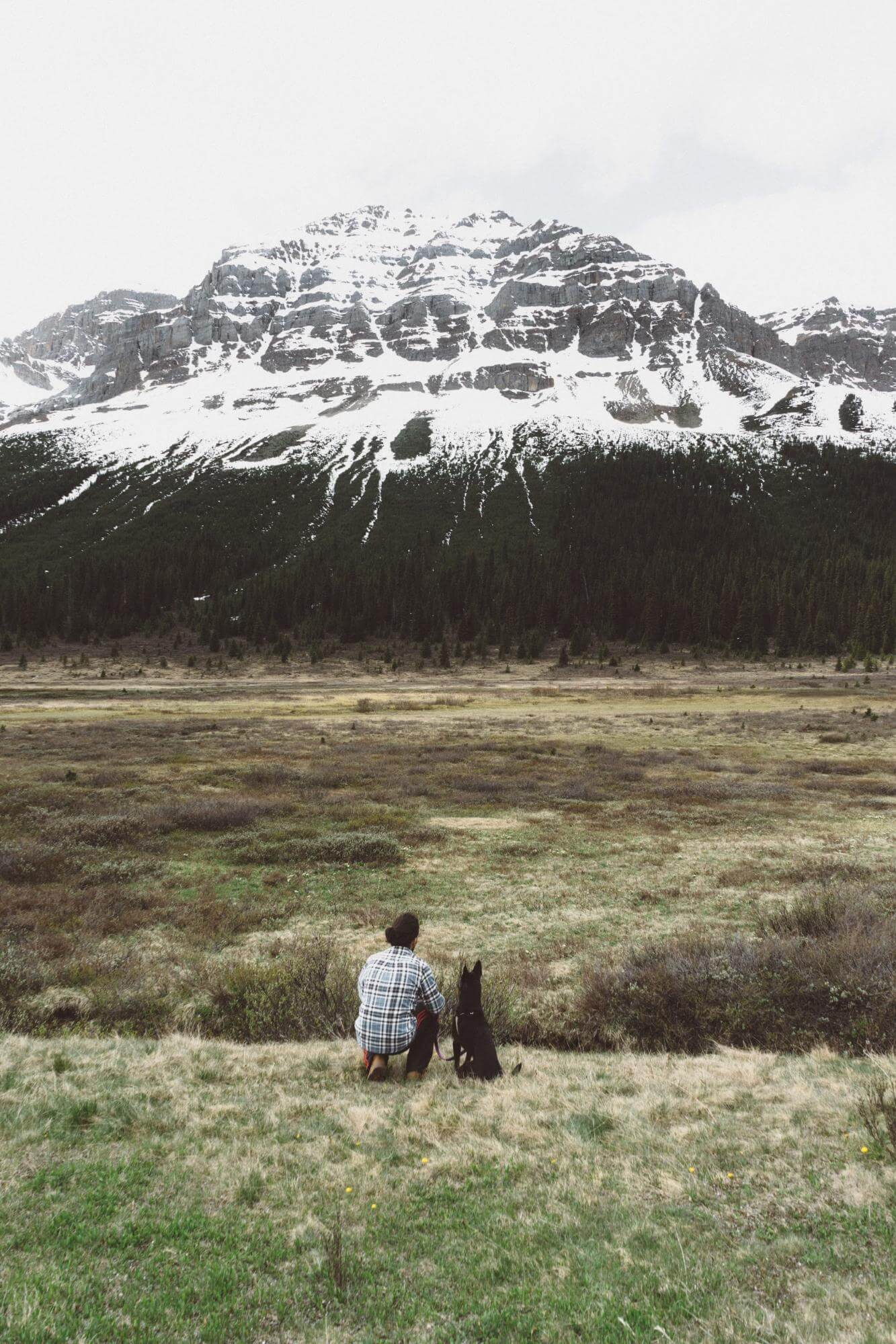 A man and a dog looking at the mountain