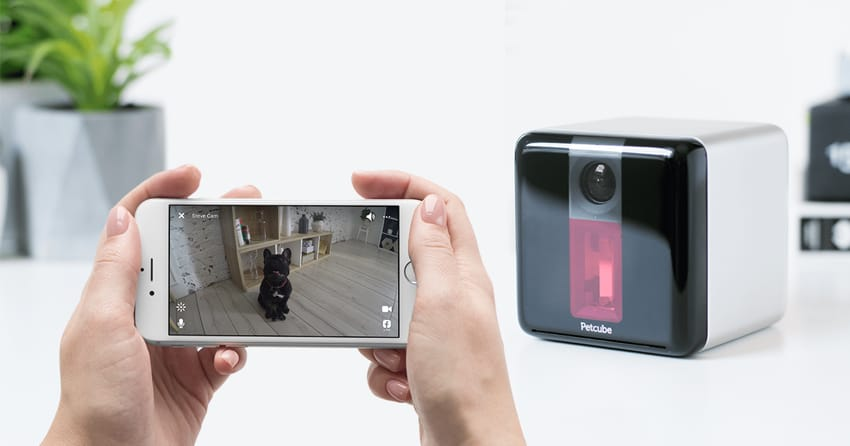 petcube play pet camera