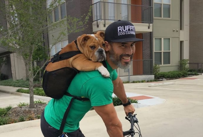 dog backpack ruffit