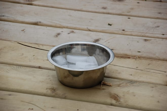 ice water in a bowl