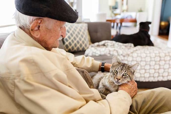 senior citizen with an old cat