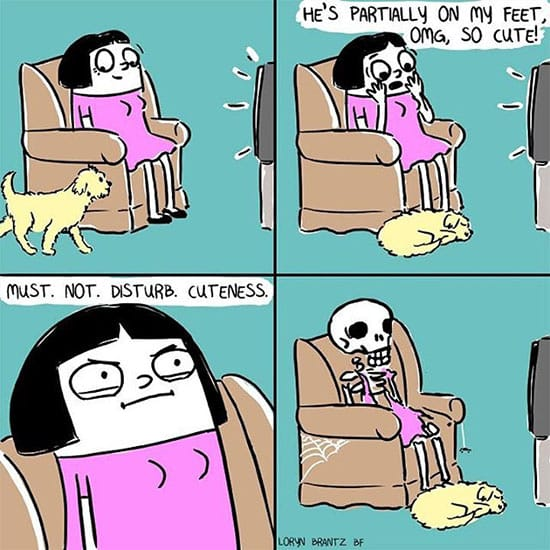 comics for dog owners