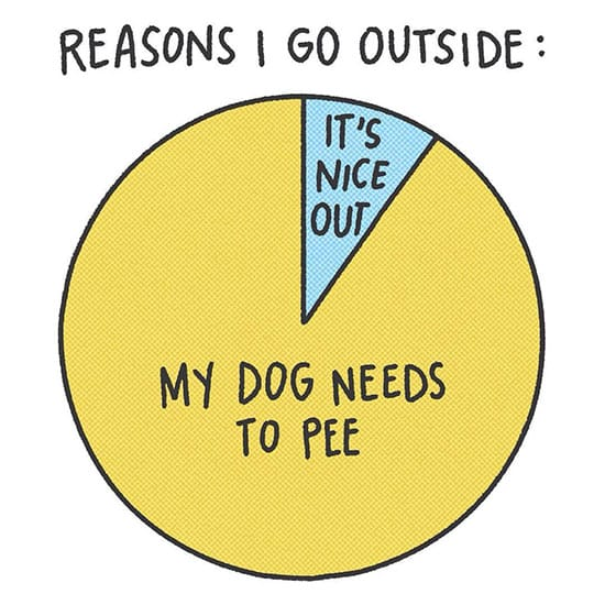 dog comic reason to go outside