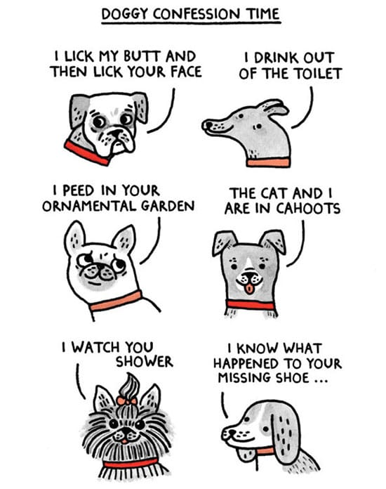 gemma correll dog comic