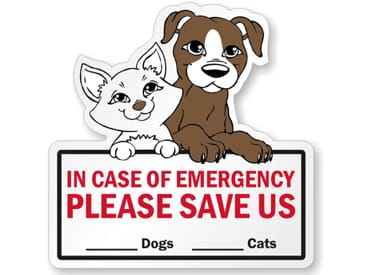 7 Critical Pet Fire Safety Tips