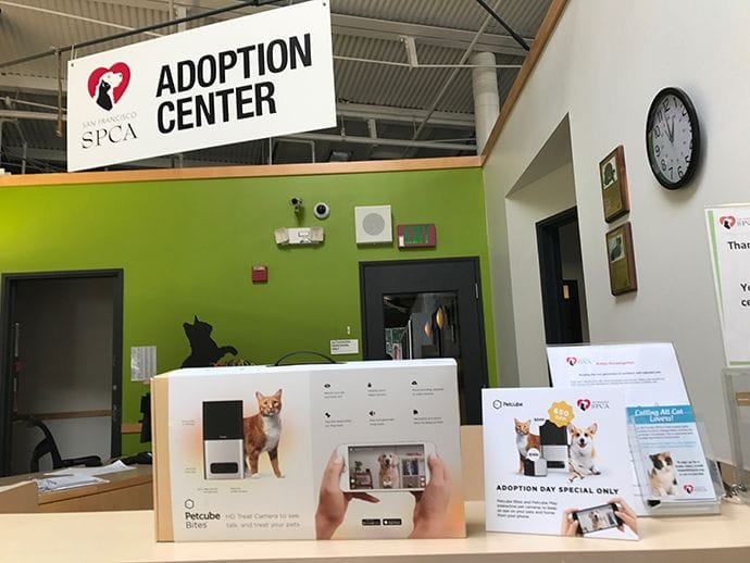 Petcube Bites on display at San Francisco SPCA Adoption Center