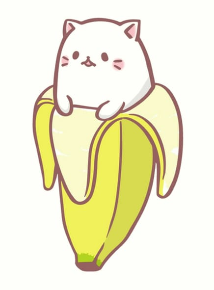 cat as a banana