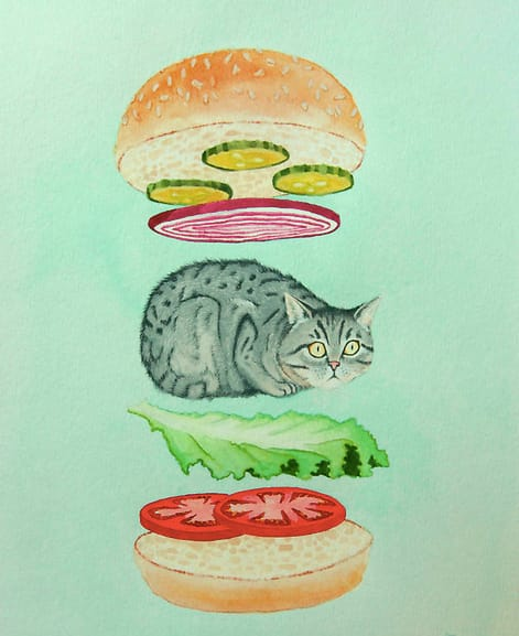 drawing of a cat as a hamburger