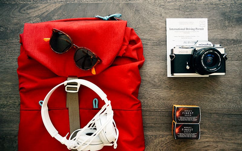 8 Pet Supplies for People Who Love to Travel