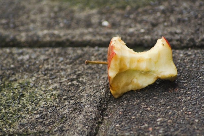 apple core on the ground