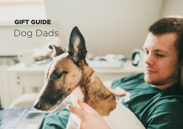 Gift Guide: 12 Gifts For The Doggy Daddy