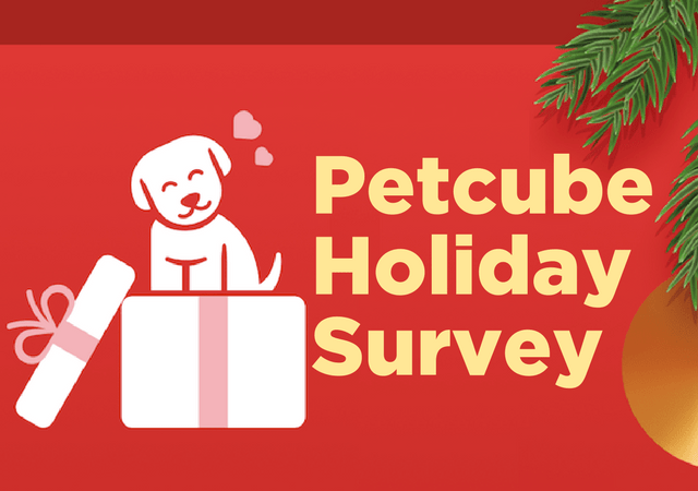 Petcube Holiday Survey Shows Christmas is Big For Pets
