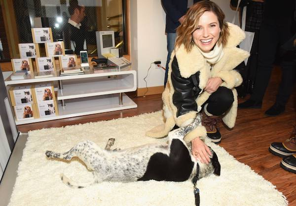 Petcube Generates Buzz at Sundance, and Finds a Forever Home for Ryder