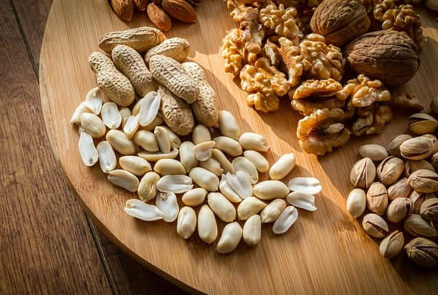 Can Dogs Eat Nuts? by mixdogbreeds.info