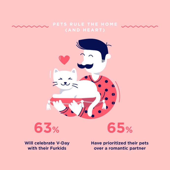 Pets rule the home infographic
