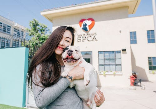 San Francisco SPCA Adoption Center