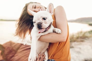 Dog Behaviors and What They Mean