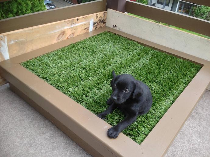 dog astroturf porch potty