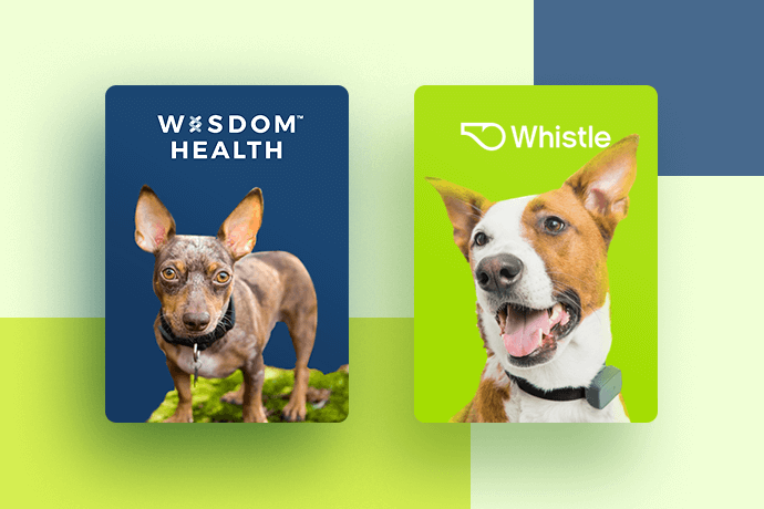 June Petcube Care Perks Whistle Pet Tracker and Wisdom Health DNA Test Kit