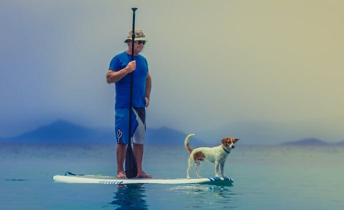 surfing with a dog on vacation