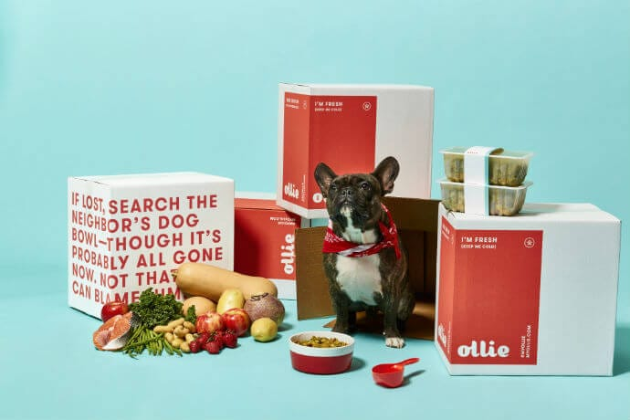 Ollie's Co-Founder On Delivering Human-Grade Food To Your Dog