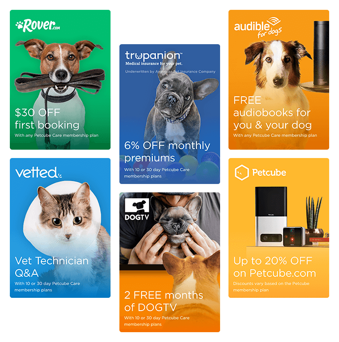 Petcube Care Partner Perks