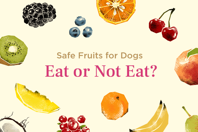 safe fruits for dogs article cover