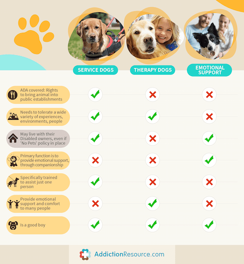 service dogs and therapy dogs comparison table