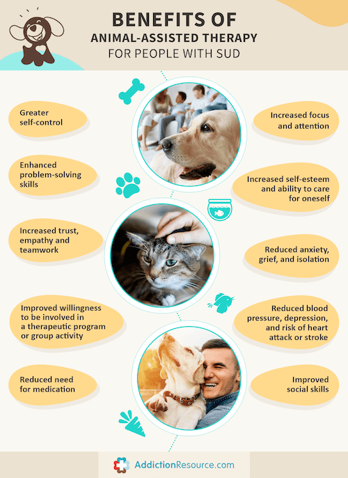 Infographic benefits of animal-assisted therapy