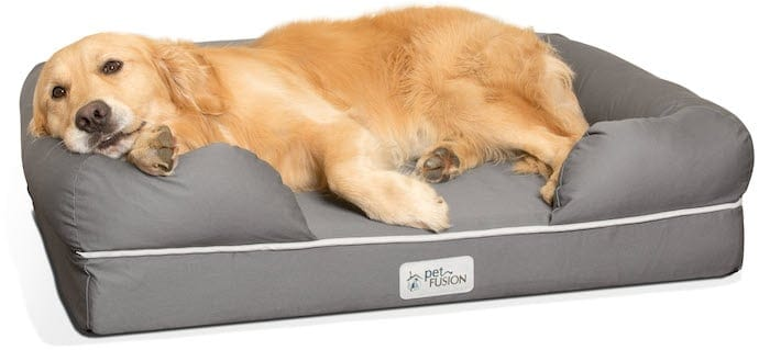 Dog retriever laying on the bed for dogs