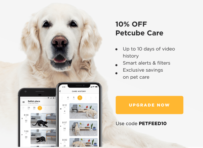 10% OFF Petcube Care